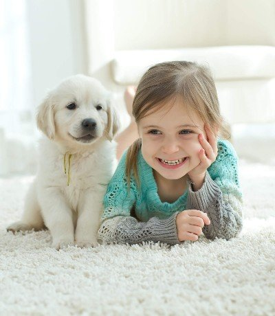 Pet Urine Cleaner in the township of Manalapan New Jersey