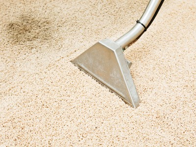 Vacuum Your Carpet - PowerPro Carpet and Rug Cleaning Service